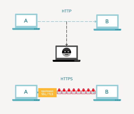 Схема работы протокола HTTP и HTTPS (фото от Yandex)