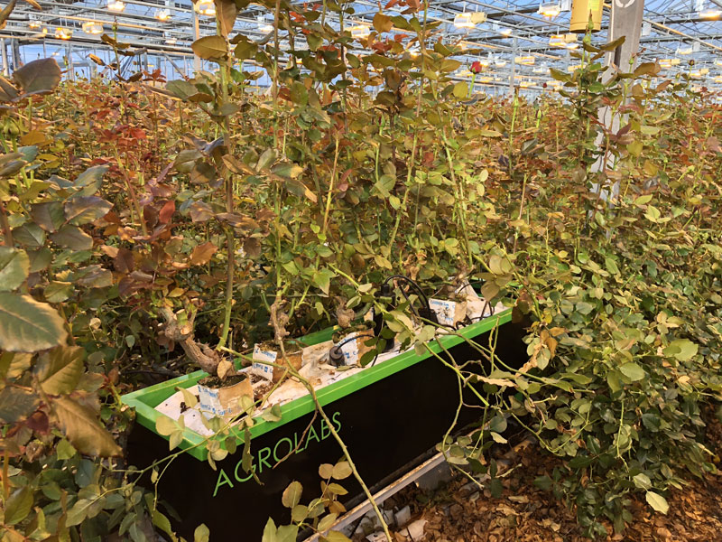 Agrolabs-4