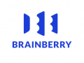BRAINBERRY GROUP LLC